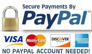 Paypal Secure Online Payments
